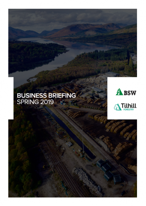 Business Briefing Spring 2019