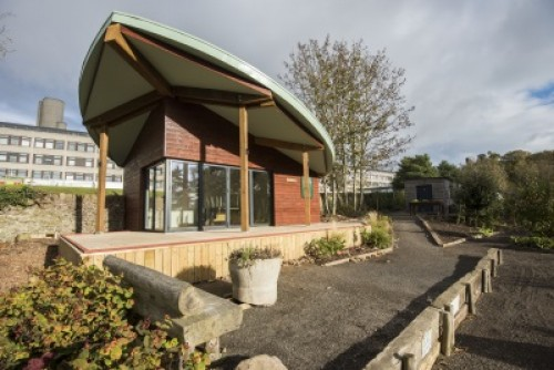 Garden Room Project Brings Out the Best of BSW Timber