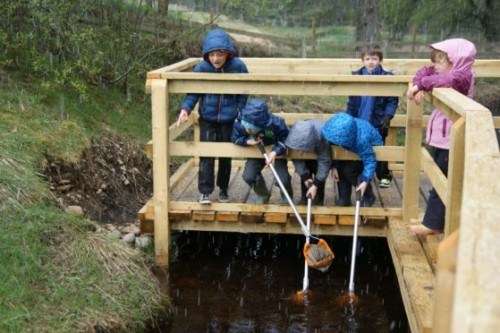 BSW Provides Primary School With New Pond Platform