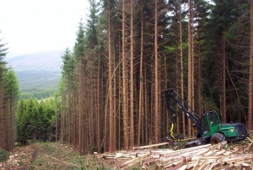 BSW and Tilhill announce vertical integration of timber supply chain
