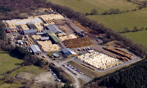 BSW Timber Creates 25 New Jobs at Newbridge-on-Wye Sawmill