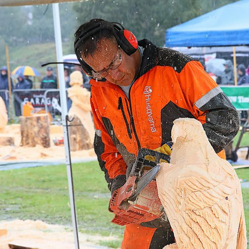 Tilhill Forestry's Pete Bowsher finishes second at BSW-sponsored Carve Carrbridge